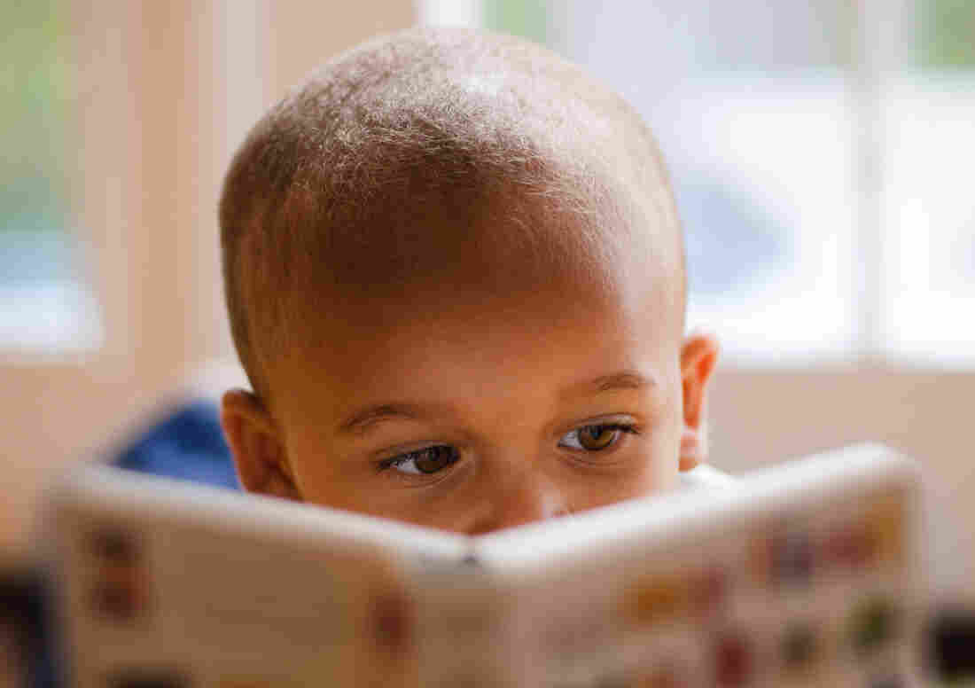 Colour childrens literature - People Of Color Accounted For 22 Percent Of Children S Books Characters In 2016