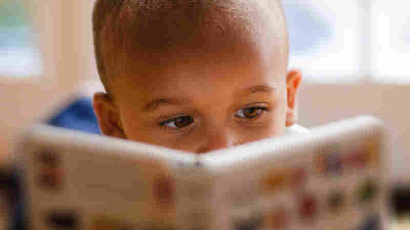 People Of Color Accounted For 22 Percent Of Children's Books Characters In 2016