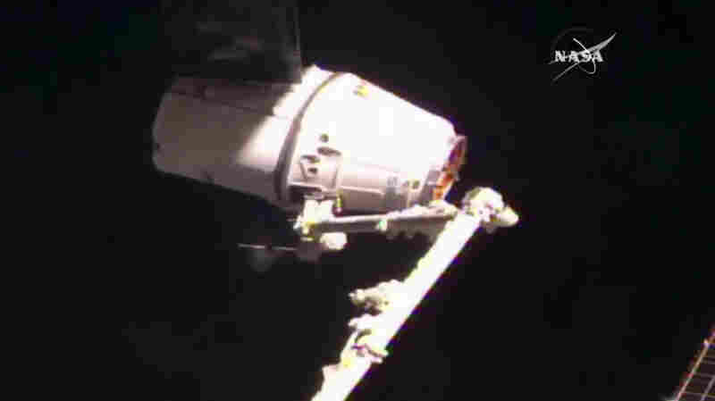 SpaceX Cargo Craft Is Now In Space Station's Grip, One Day After Aborted Docking