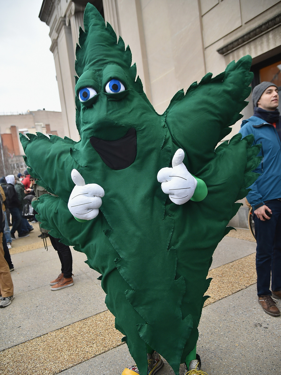 A demonstrator at a marijuana legalization rally in Washington, D.C., on Inauguration Day 2017. (Theo Wargo/Getty Images)