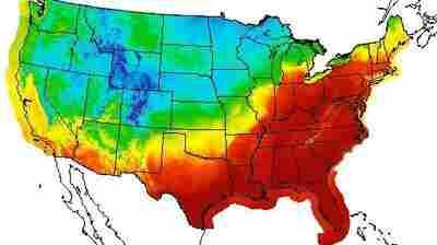 71 Degrees In February: Temperatures In Boston And Buffalo Rewrite Record Book