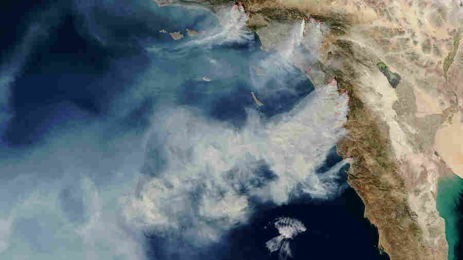 What's The Leading Cause Of Wildfires In The U.S.? Humans