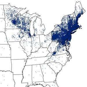 Forbidding Forecast For Lyme Disease In The Northeast
