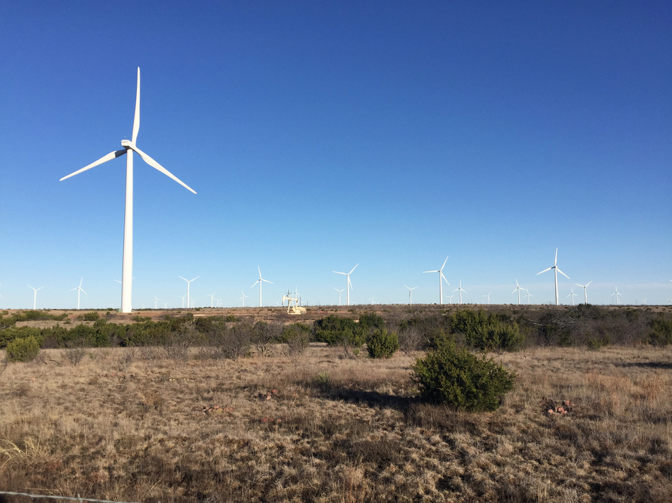 Part of one of the world's biggest renewable energy systems, wind turbines dot the landscape on the edge of Sweetwater, Texas, along with a pump jack pulling up oil. (Ari Shapiro/NPR)