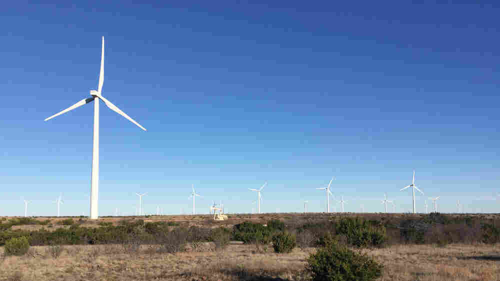 Wind Energy Takes Flight In The Heart Of Texas Oil Country