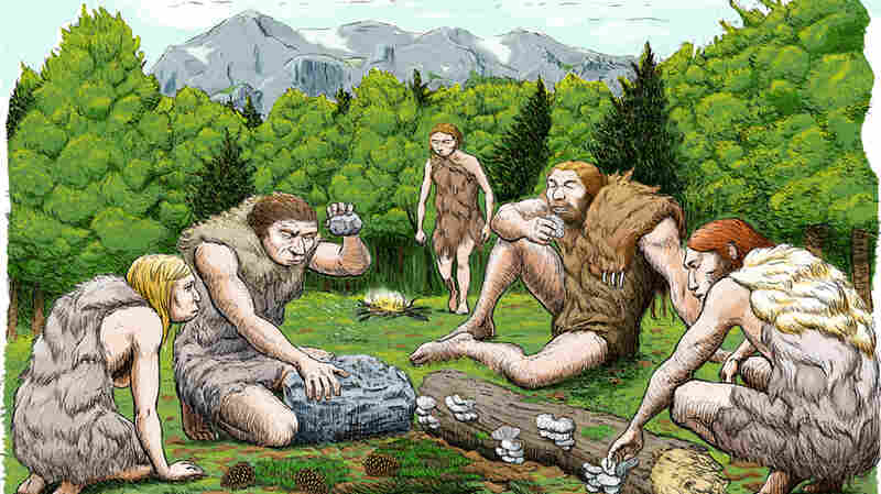 Some Neanderthals Were Vegetarian — And They Likely Kissed Our Human Ancestors