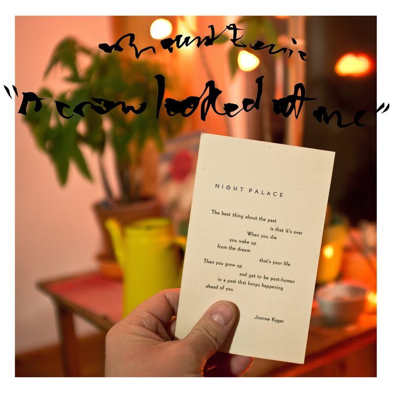 Review Mount Eerie A Crow Looked At Me Npr