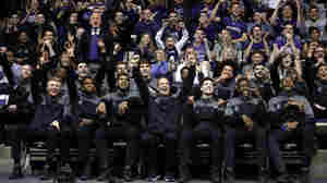March Gladness: A Northwestern Fan Celebrates The Team's First NCAA Bid