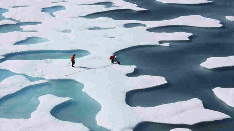 Natural Environmental Swings Cause Up To Half Of Arctic Sea Ice Loss