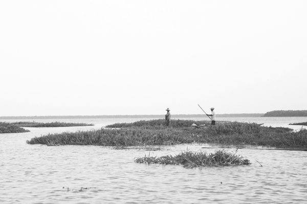 The fishing village of Nueva Venecia is situated in a lake deep in the marshlands of northwestern Colombia. The marshlands could be inundated with ocean water by 2100, if sea levels rise by 3 feet or more as projected by scientists.