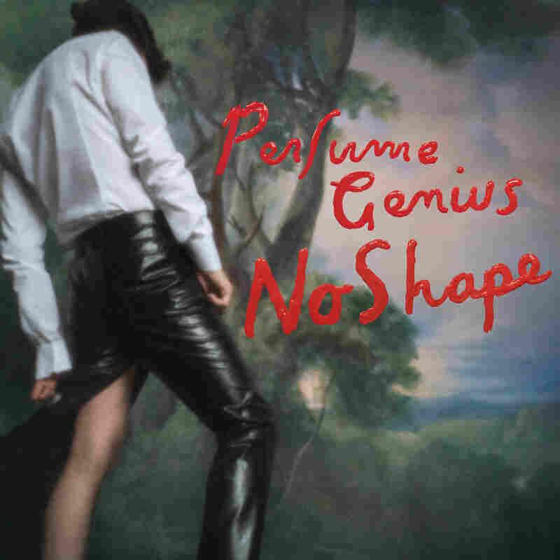 Perfume Genius' No Shape