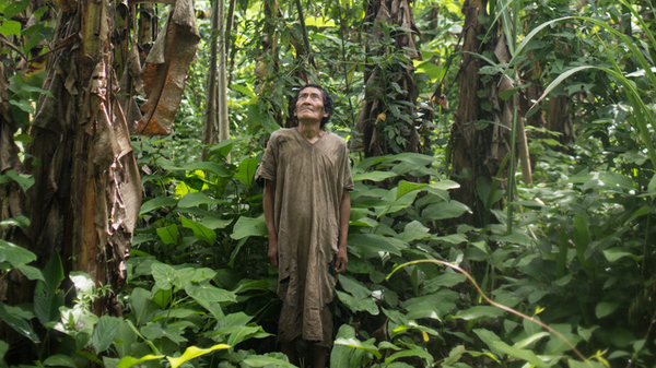 Jose, a member of the Tsimane group who