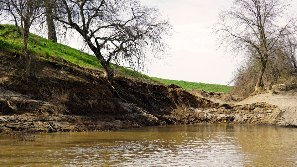 The levees below the Oroville Dam were damaged by heavy floodwaters this winter and many need repairs. (Lauren Sommer/KQED)