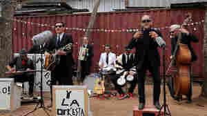 Music Magazine: Sergio Mendoza, Vinyl Collectors And Tejano Punks On Film