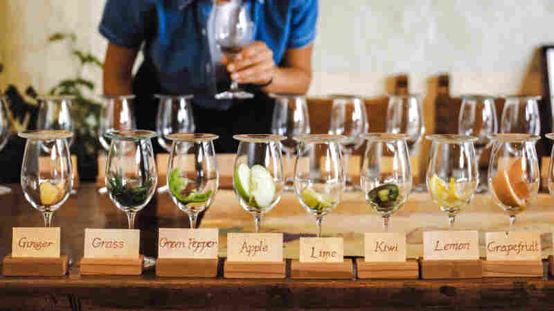 Oaky, With Notes Of BS: Why Wine Tasting Struggles To Get It On The Nose