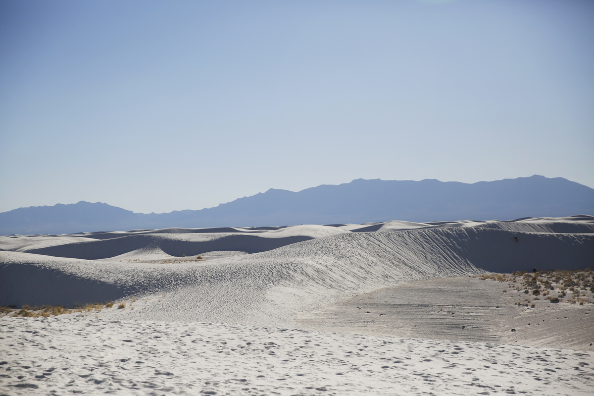 PHOTOS: The Creamy, Sculpted Dunes Of White Sands National ...
