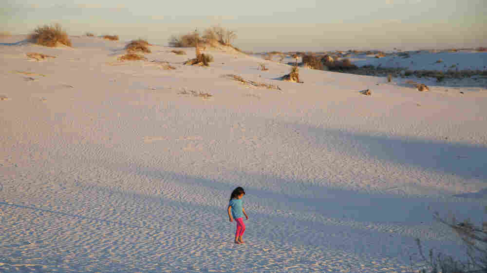 PHOTOS: The Creamy, Sculpted Dunes Of White Sands National Monument