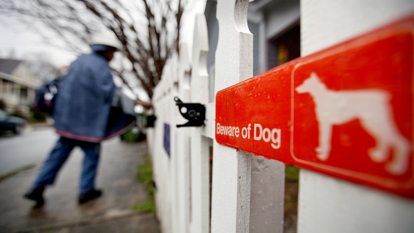 The U.S. Postal Service announced on Thursday that the number of dog attacks on letter carriers had increased in 2016. Above, USPS letter carrier Jamesa Euler delivers mail in Atlanta in 2013.