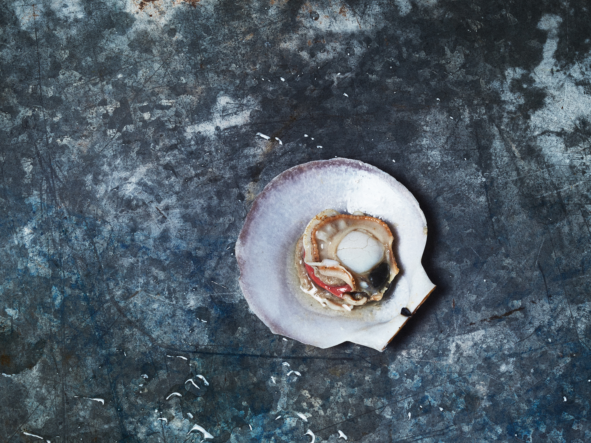 """This dish features a scallop in its shell. Bivalves, like scallops are threatened by rising ocean acidification. Wist left it in the shell, so people would think of it """"as an animal and not just a scallop on a plate."""""""
