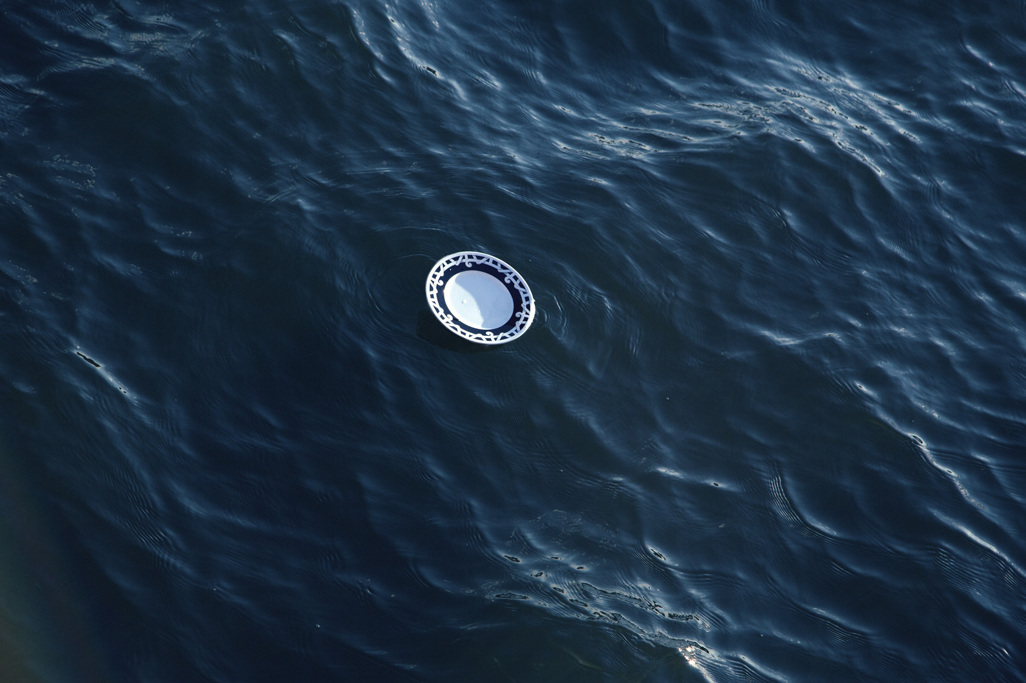 """A dinner plate floats in New York City's East River. """"It said something about just getting swept away and belongings being flooded,"""" says Wist. But it also implied """"us persevering... and eating dinner despite that."""""""