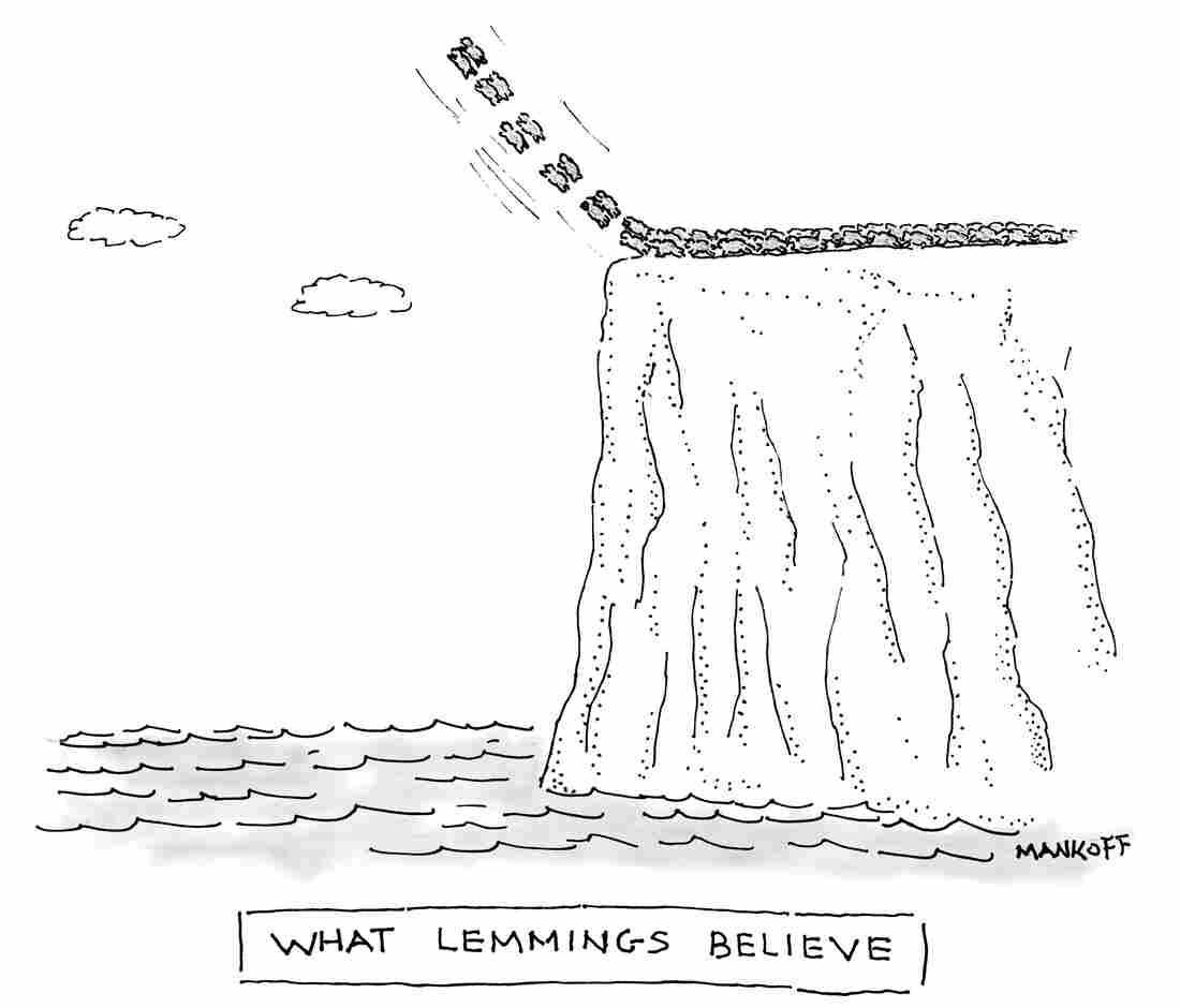 What Lemmings Believe