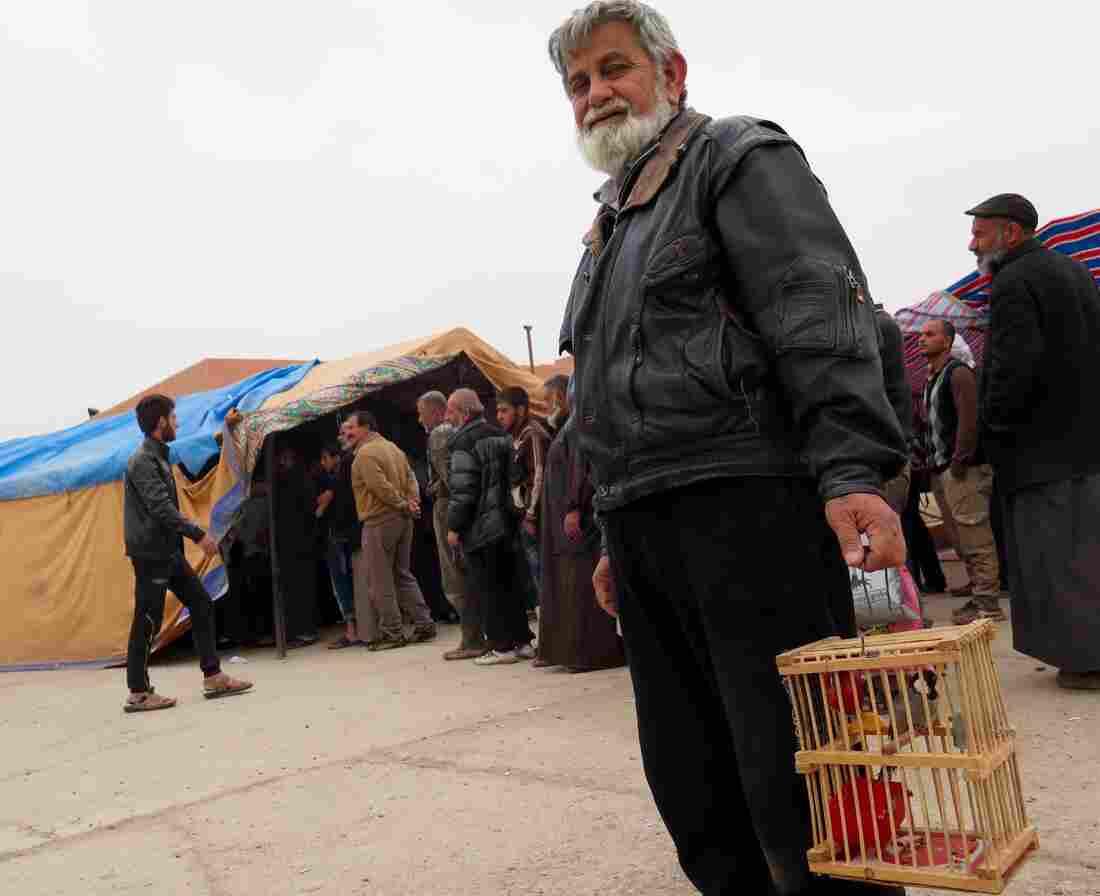Iraq opens new Tigris bridge escape route for people fleeing Mosul