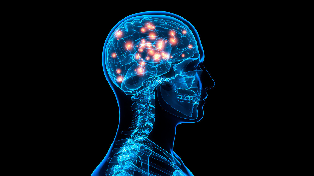 Clues To Failing Memory Found In Brain Stimulation Study ...
