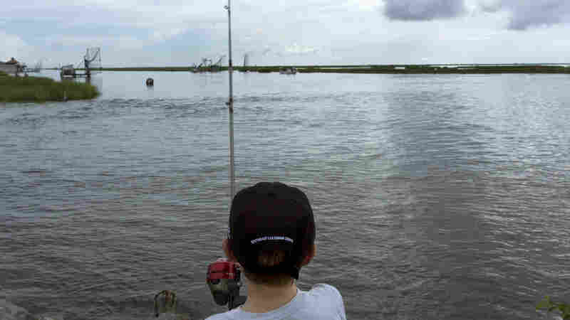 Louisiana's Governor Declares State Of Emergency Over Disappearing Coastline