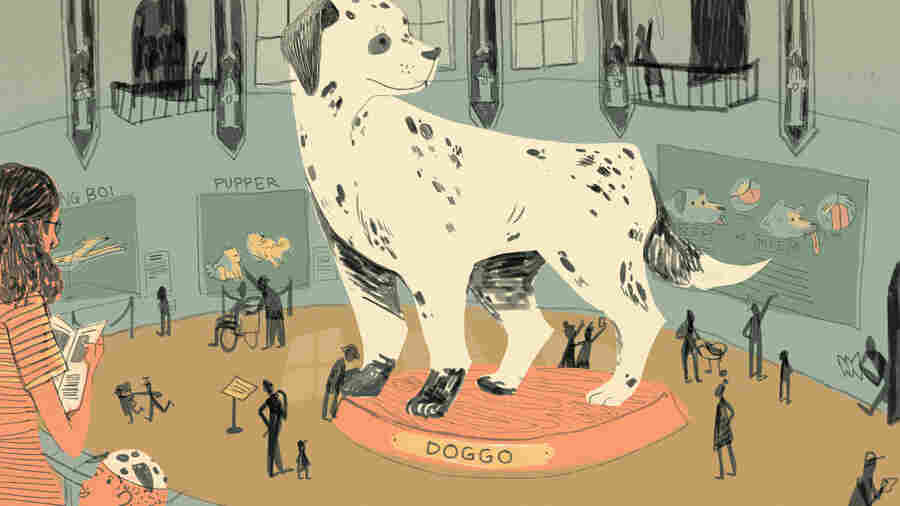 Dogs Are Doggos: An Internet Language Built Around Love For The Puppers