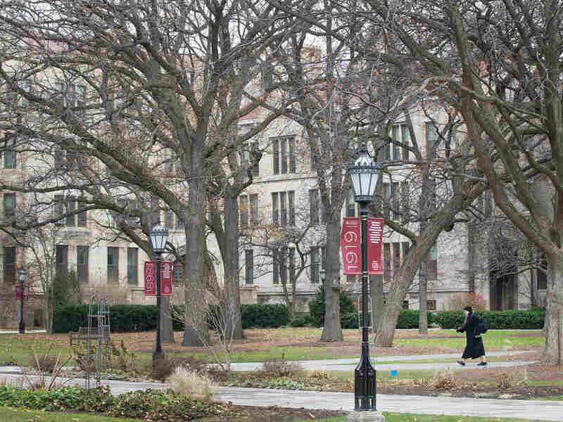 The University of Chicago campus in 2015.