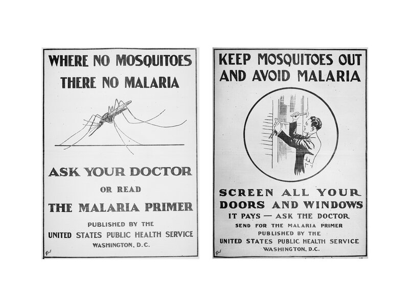 Malaria Wiped Out In U S  But Still Plagues U S  Hospitals : Goats