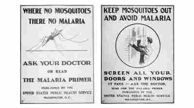 Malaria Wiped Out In U.S. But Still Plagues U.S. Hospitals