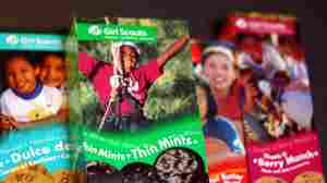 Kansas City Archdiocese Cutting Ties With Girl Scouts Over 'Troubling Trends'