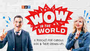 Wow In the World: A New NPR Podcast for Curious Kids and their Grown-Ups
