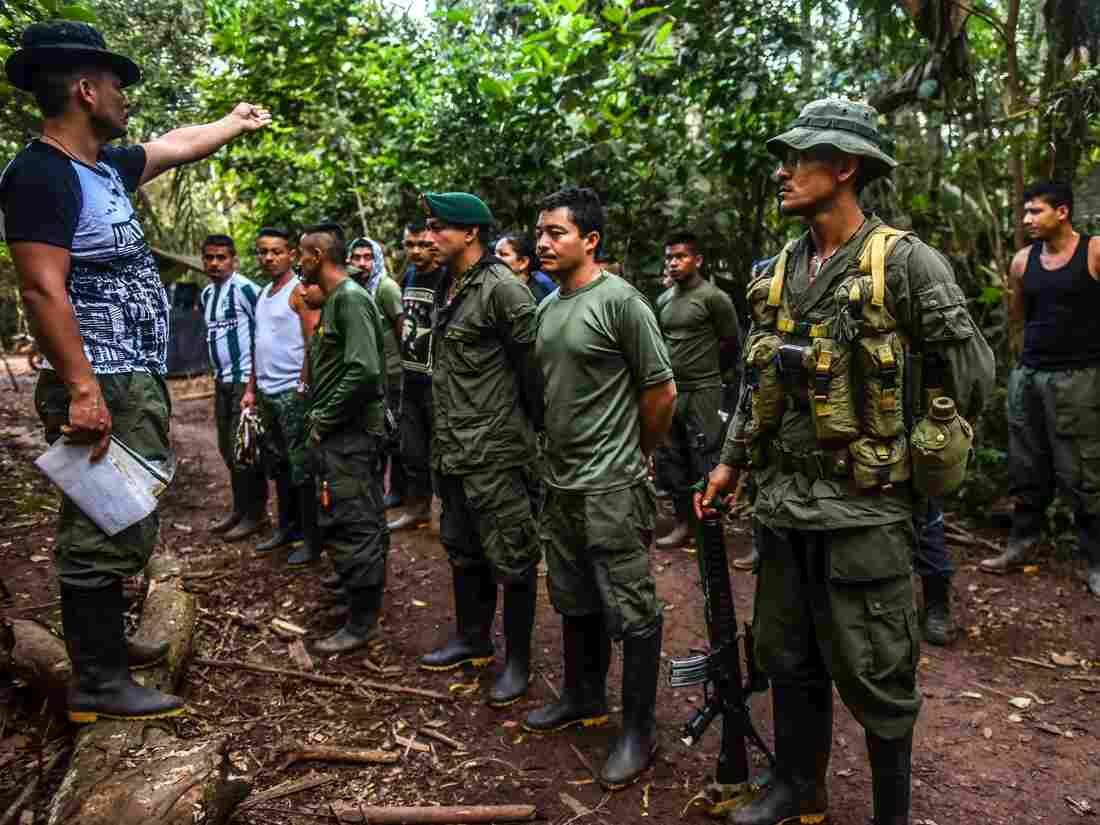 First Colombia FARC rebels complete disarmament