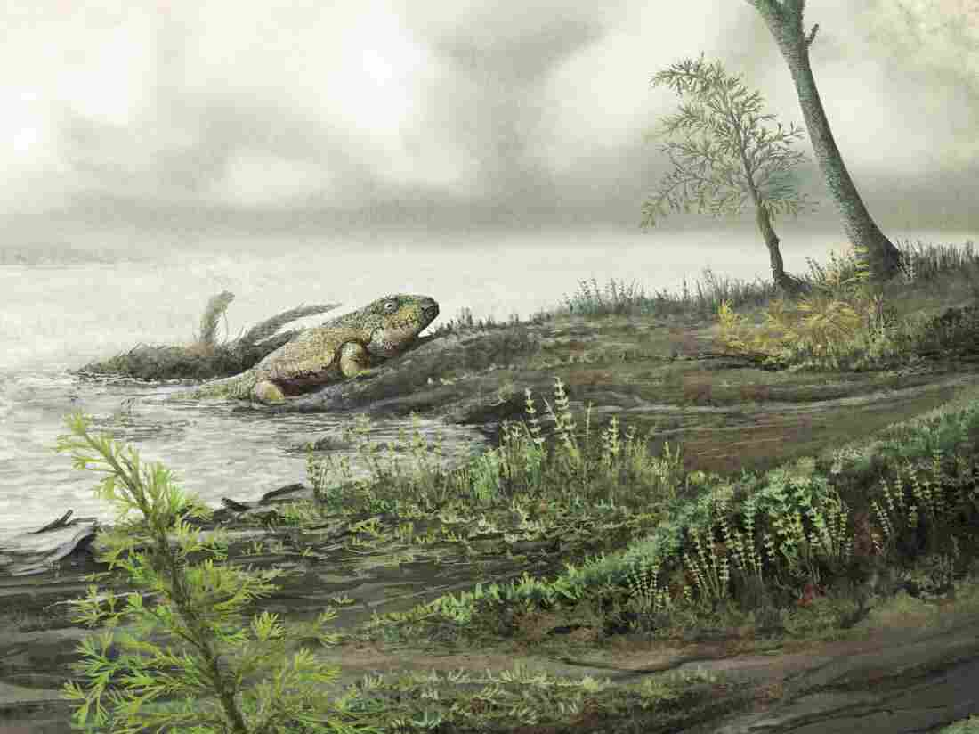 Drug-resistant superbugs originate before age of dinosaurs