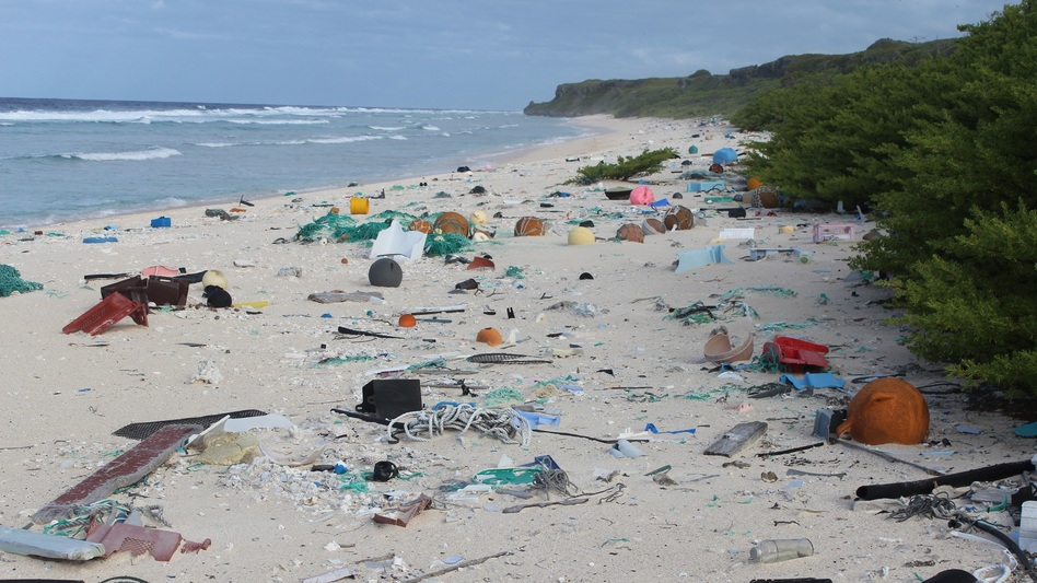 Henderson Island, in the South Pacific, is thousands of miles from any major industrial centers or human communities. But it's filled with trash — more than 37 million pieces of it, researchers say. (Jennifer Lavers/University of Tasmania)