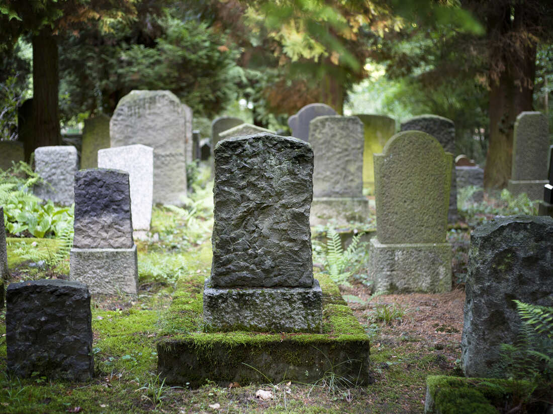 Whole-family cemeteries can include burial with pets, says Barbara J. King.
