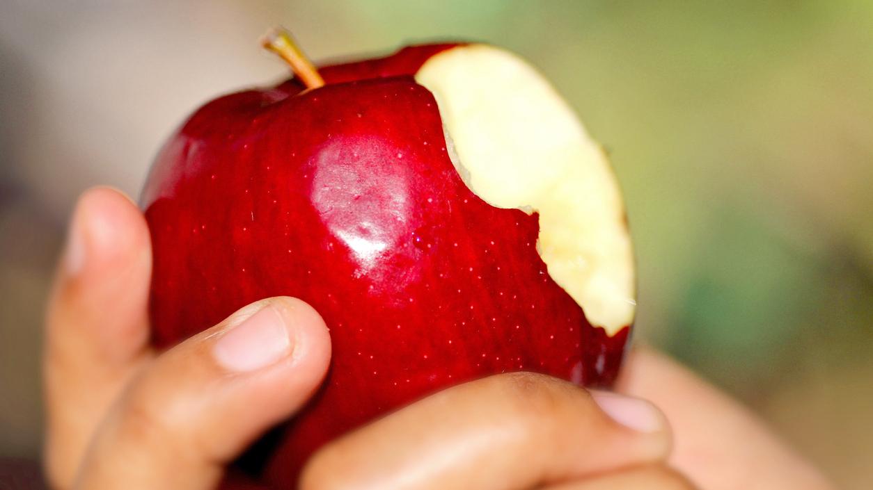 Apple wide 0c7334d0e65afbc5c837c0d15822a65f9f8fec34