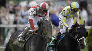 Cloud Computing Pulls Upset Win At Preakness, Ending Triple Crown Hopes