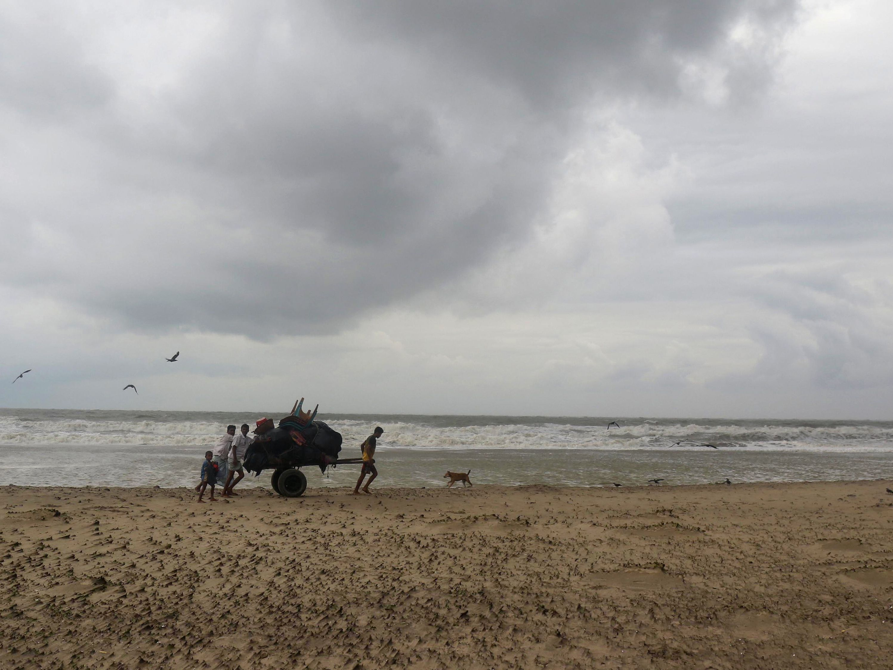 Hundreds of thousands evacuated as Cyclone Mora crosses Bangladesh coast