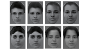 Cracking The Code That Lets The Brain ID Any Face, Fast