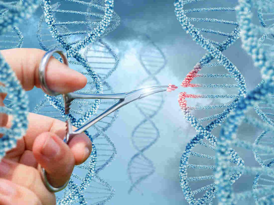 Inserting a molecule into a DNA concept design.