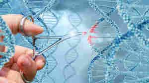 CRISPR, 5 Ways