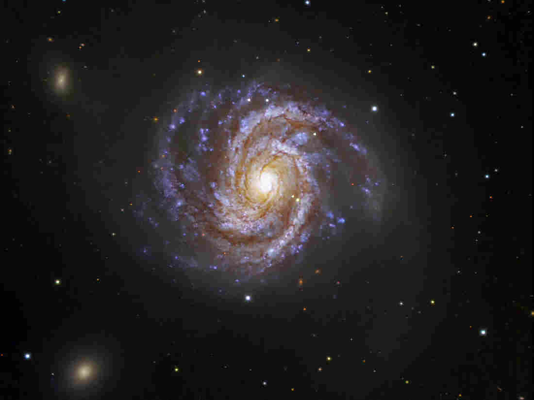 Messier 100 is a grand spiral galaxy.