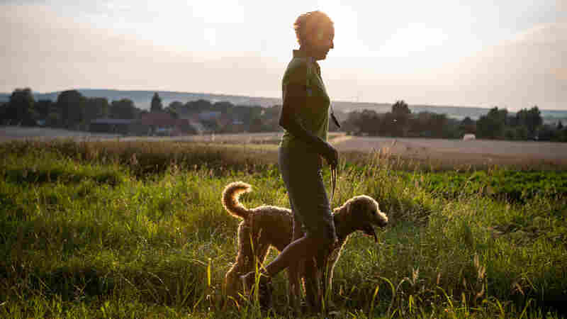 Dog Owners Walk 22 Minutes More Per Day. And Yes, It Counts As Exercise