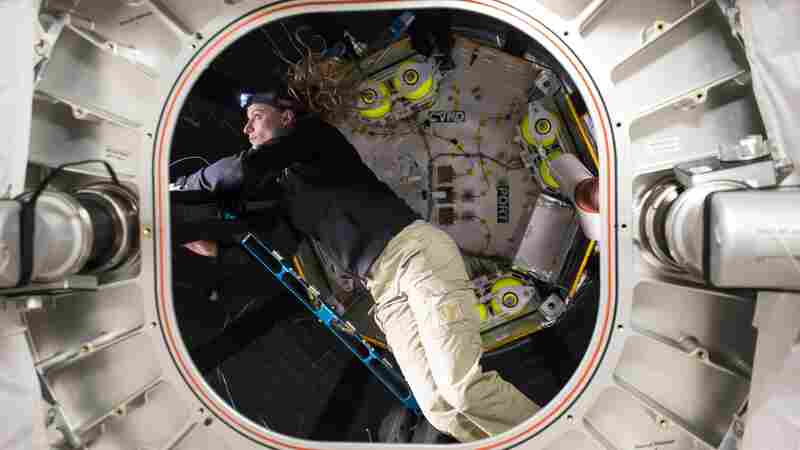 After A Year In Space, The Air Hasn't Gone Out Of NASA's Inflated Module