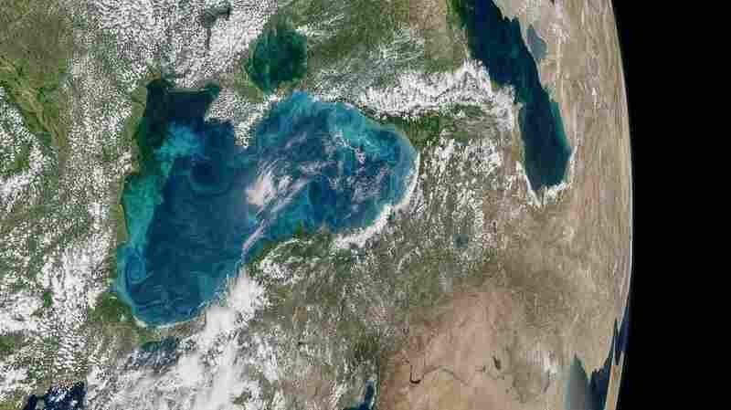 Phytoplankton Have Turned The Bosphorus A Stunning Turquoise