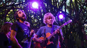 Watch Patrick Watson Enthrall The Pickathon Crowd With 'Lighthouse'