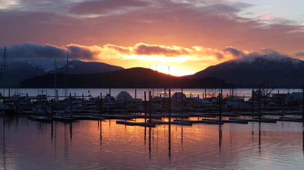 "The view from Auke Bay, Alaska. One commentator says political life in Alaska takes a back seat during the height of summer. ""Once the fish start running ... all the air goes out of it and people stop paying attention,"" said Charles Wohlforth."